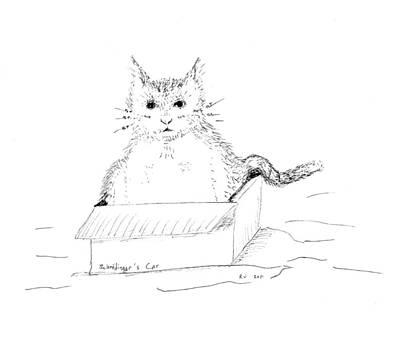 Schrodinger Cat Print by Regina Valluzzi