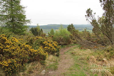Landscape Photograph - Scottish Landscape by Kerstin Ivarsson
