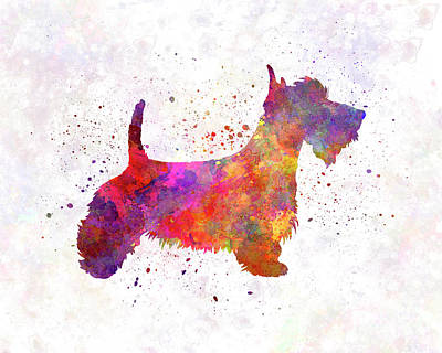 Scottish Dog Painting - Scottish Terrier In Watercolor by Pablo Romero