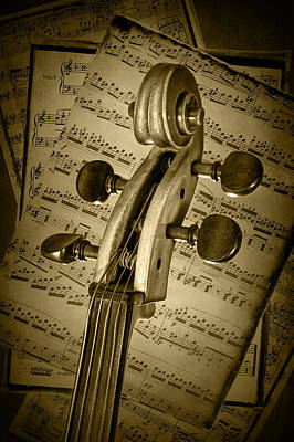Scroll Of A Cello Stringed Instrument In Sepia Print by Randall Nyhof