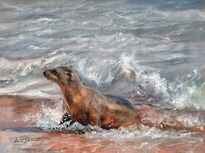Marine Mammal Painting - Sea Lion by David Stribbling