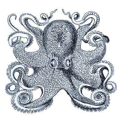 Beach Digital Art - Sea Octopus Coastal Decor by Erin Cadigan