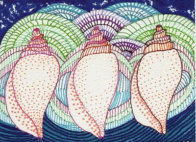 Sharpie Drawing - Sea Shells by Leslie Genser