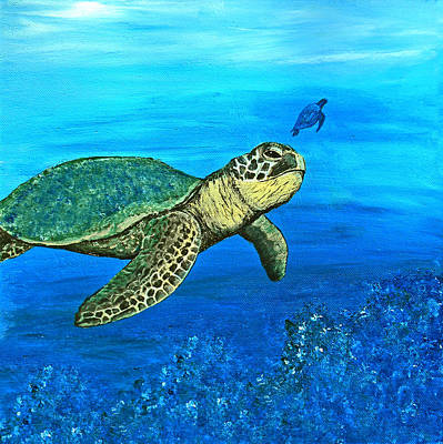 Sea Turtle Print by Sabrina Zbasnik