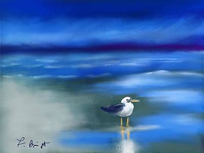 Seagull Standing 2 Original by Frank Bright