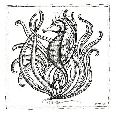 Coastal Drawing - Seahorse by Stephanie Troxell