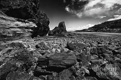 Sea View Photograph - Seal Rock, Oregon by Masako Metz