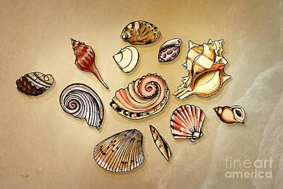 Wash Mixed Media - Seashells Collection by Bedros Awak