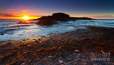 Seaweed Photograph - Second Valley Sunset by Bill  Robinson