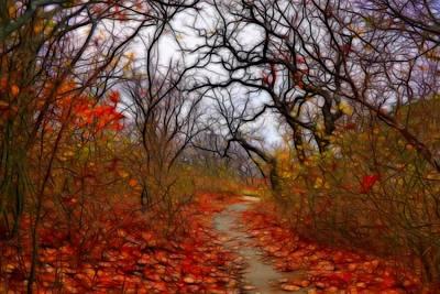 Plein Air Digital Art - Secret Path by Lilia D