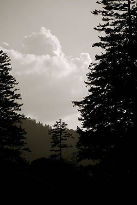 See The Mountain Through The Trees Print by Kimberly Camacho