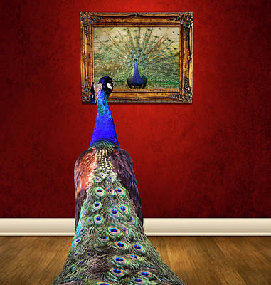 Peacock Photograph - Self Portrait by Steven  Michael