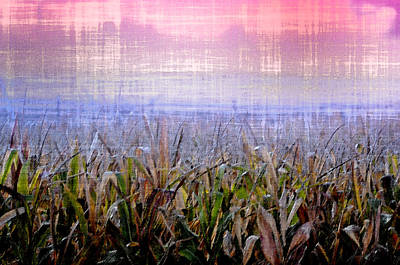 Cornfield Digital Art - September Cornfield by Bill Cannon
