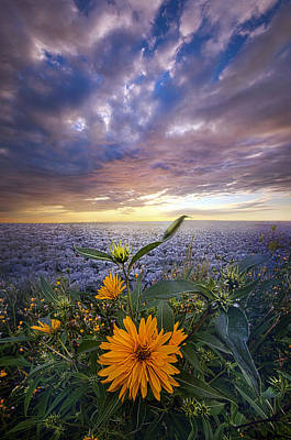Heaven Photograph - September Equinox by Phil Koch