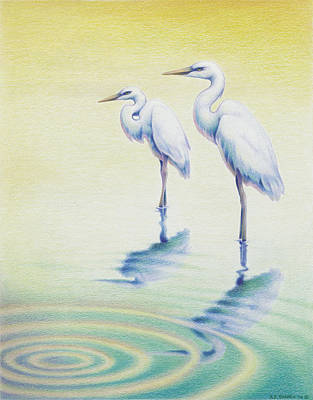 Egret Drawing - Serenity by Amy S Turner