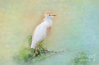 Egret Digital Art - Serenity by Betty LaRue