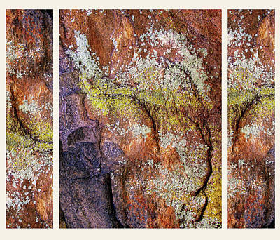 Set In Stone Triptych Print by Jessica Jenney