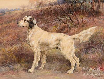 Skylines Painting - Setter On Profile by Celestial Images