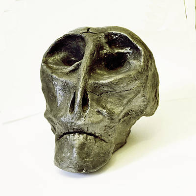 Ceramic Ceramic Art - Severus by Dann