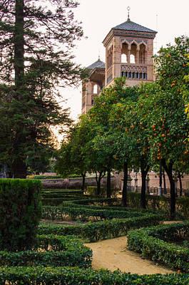 Nature Photograph - Seville - Plaza De America At Sunset by Andrea Mazzocchetti