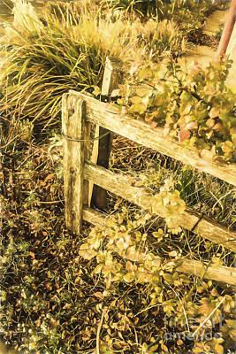 Aged Wood Digital Art - Shabby Garden Details by Jorgo Photography - Wall Art Gallery