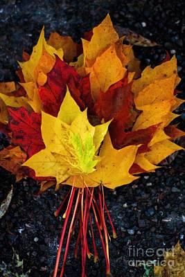 Shade Of Autumn  Print by Gary Bridger