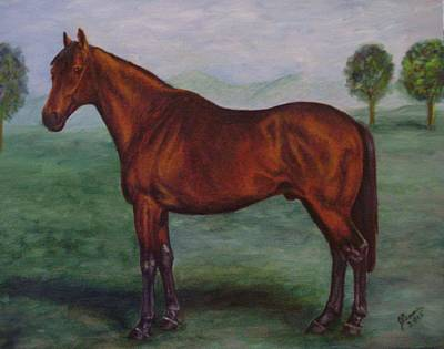 Shadeed Champion European Racehorse Print by Joann Renner