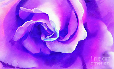 Purple Rose Photograph - Shades Of Ecstasy by Krissy Katsimbras