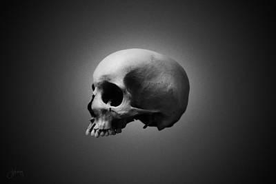 Skull Photograph - Shades Of Gray II by Joseph Westrupp