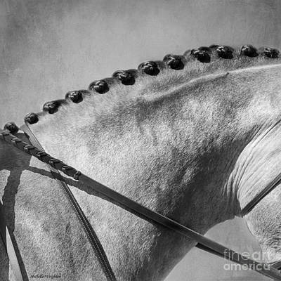 Shades Of Grey Fine Art Horse Photography Print by Michelle Wrighton