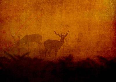 Digital Art - Shadow Deer by Sarah Vernon