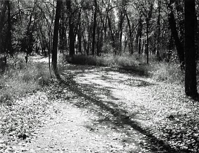 Shadow Path Print by Allan McConnell