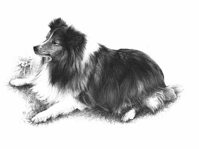 Companion Drawing - Shana by Rachel Christine Nowicki