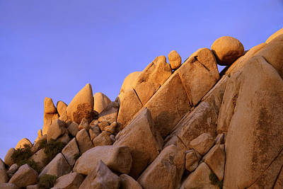 Joshua Tree Photograph - Shapes by Chad Dutson