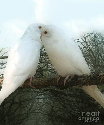 Parakeet Digital Art - Sharing Secrets by RC DeWinter