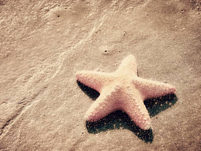 She Dreamed Of Becoming A Star Print by Amy Tyler