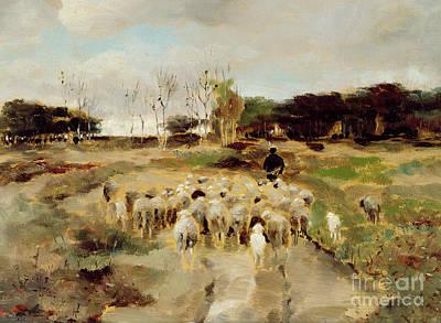 Walking Path Painting - Sheep Flock by Anton Mauve