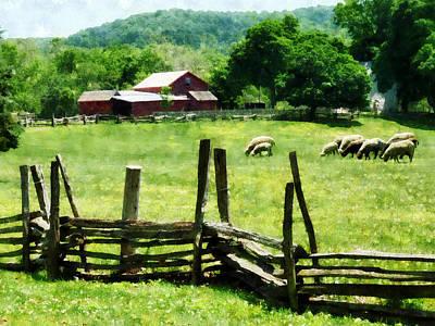 Barn Photograph - Sheep Grazing In Pasture by Susan Savad