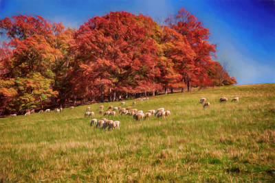 Autumn Digital Art - Sheep In The Autumn Meadow by John Haldane
