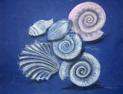 Shell Pastel Painting - Shells by Barbara Teller