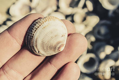 Shelly Point Beach Print by Jorgo Photography - Wall Art Gallery