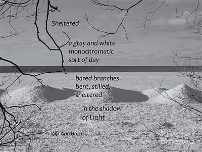 Sheltered Print by Ann Horn