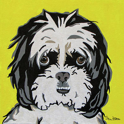 Dog Portrait Painting - Shih Tzu by Slade Roberts