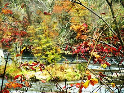 Shimmering Leaves Print by Deb Jazi Raulerson