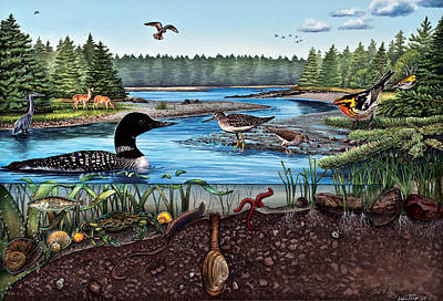 Sandpiper Painting - Ship Harbor Mudflat In Acadia National Park by Logan Parsons