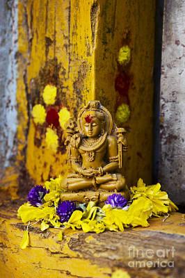 Shiva Devotion Print by Tim Gainey