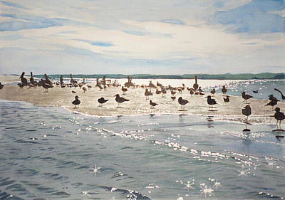 Shorebird Convention Original by Christopher Reid