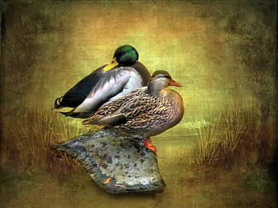 Waterfowl Digital Art - Shoreline by Jessica Jenney