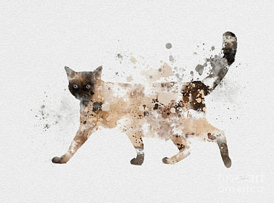 Adorable Mixed Media - Siamese Cat by Rebecca Jenkins