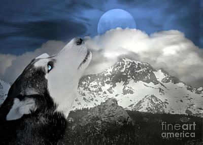 Siberian Husky And Blue Moon Print by Stephanie Laird